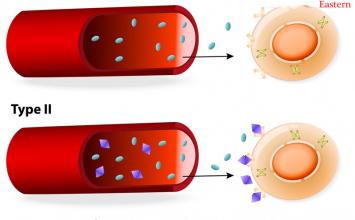 Sự khác nhau giữa tiểu đường type 1 và tiểu đường type 2