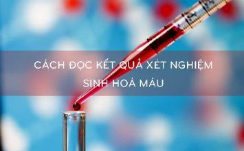 cách đọc kết quả xét nghiệm sinh hóa máu