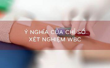 chỉ số xét nghiệm WBC