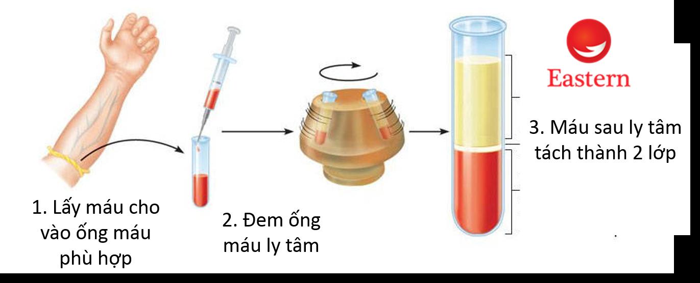 sử dụng ống thu thập máu