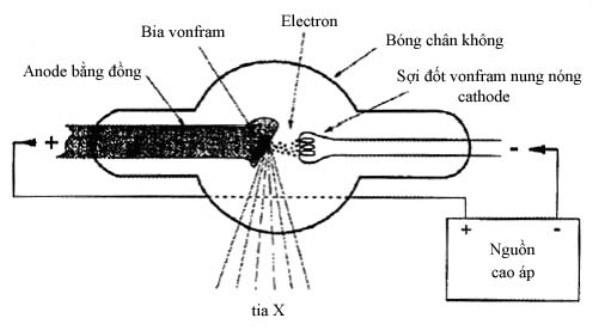 máy chụp x quang