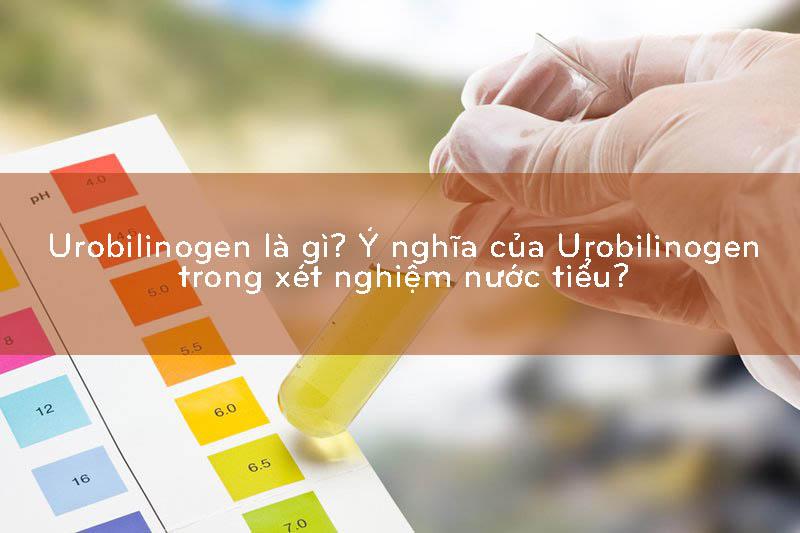 urobilinogen là gì